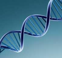 Un estudio de una universidad de Londres indica que los genes influyen más que los docentes.