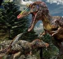 CHINA.- Un nuevo tipo de tiranosaurio de 66 millones de años y nariz alargada fue hallado en el sur de China. Foto: Internet