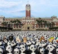 Cada de uno de estos pandas representan al total de especies de este animal que quedan en el mundo.