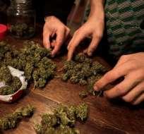 Ley uruguaya de marihuana enfrenta primeros pleitos por razones laborales.