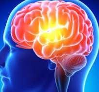 Además, conocer un segundo idioma retrasa los síntomas de enfermedades degenerativas como el Alzhéimer.