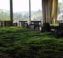 La sala de un hotel abandonado en Japón.