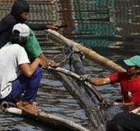 Entre 15 y 20 tifones visitan cada año Filipinas durante la temporada lluviosa, que empieza por lo general en junio y concluye en noviembre.