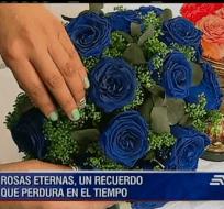 Una ecuatoriana emprendedora comercializa estas rosas que se pueden conservar toda la vida.