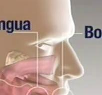 GUAYAQUIL:-  Al menos 250 componentes del tabaco son nocivos y más de 50 causan cáncer, entre otras enfermedades crónicas. Fotos: Captura Video.