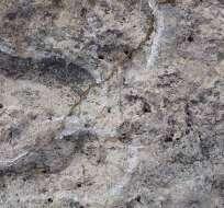 La primera huella fue descubierta en otoño en arcilla en las orillas de la isla Calvert, en Canadá. Foto referencial