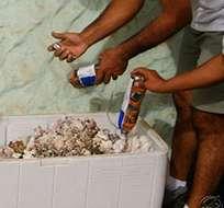 GALÁPAGOS, Ecuador.- Funcionarios del PNG y la policía ambiental realizan casi una incautación diaria de rocas, caracolas, conchas, corales o de arena. Foto: Ministerio del Ambiente