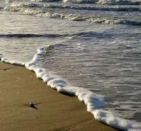 En la zona continental de Ecuador llegarán olas con altura media de 1,8 metros. Foto: Inocar