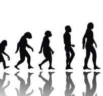 ¿Qué vendrá después del Homo sapiens?