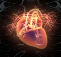 El estudio concluyó que los hombres con niveles más altos de troponina en la sangre tenían mayor probabilidad de sufrir un ataque al corazón.