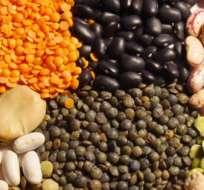 SANTIAGO DE CHILE.- En América Central y El Caribe, la producción de legumbres se ha reducido considerablemente. Foto: Referencial/NutriciónParaLaSalud.com.