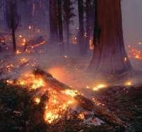30 incendios están en fase de combate, otros 36 se encuentran bajo control. Foto: Archivo