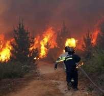 El fuego arrasó con 230 hectáreas en pocas horas y continúa activo en algunas zonas. Foto: AFP