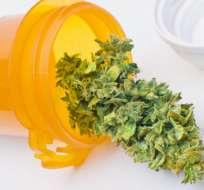 Se podrá sembrar, cultivar, comerciar y suministrar cannabis con fines médicos y científicos. Foto referencial / Internet