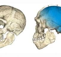 Los restos encontrados en Jebel Irhoud mostraron las características similares a las de los ancestros del ser humano, pero de una antgüedad mayor.