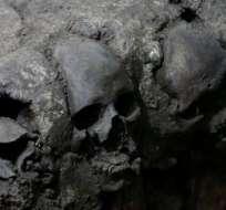 Los primeros cráneos fueron hallados en 2015.