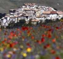 En medio de una planicie cubierta de flores, el pueblo de Castelluccio sigue siendo testimonio silencioso de los devastadores terremotos de 2016.