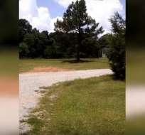 En Georgia, Jay Sullivent escuchó un fuerte estallido fuera de su casa. Foto: Captura