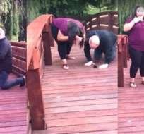 El video registrado en Facebook se volvió viral. Foto: Captura de video