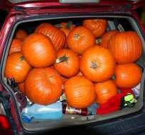 Una camioneta repleta de calabazas de Halloween robadas, en una foto tomada el 18 de octubre por la policía de Maryland, en Missouri. La policía detuvo a tres adolescentes con 48 calabazas. Foto: AP