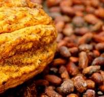 ECUADOR.- Japón importará 300 mil toneladas de cacao ecuatoriano en el 2018. Así lo confirmaron el Ministerio de Comercio Exterior y ProEcuador. Foto: Archivo