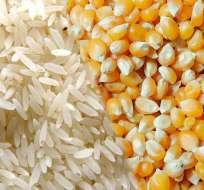 Los productores exigen un precio único para estos productos. Foto: ETN