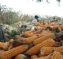 El subsecretario de agricultura asegura que el malestar de los agricultores es injustificado. - Foto: Archivo