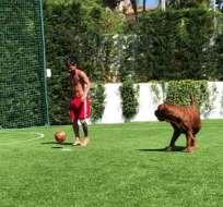 "Lionel Messi junto a su perro ""Hulk"". Foto: captura de video"
