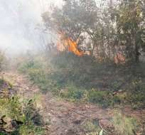 Más de 60 bomberos participaron en las tareas para apagar las llamas. Foto: diariocorreo.pe
