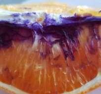 En cuestión de horas, tras ser cortada, la naranja cambió de color. Foto: NETI MOFFITT