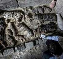 Se descubrieron tres sarcófagos que contenían gatos.