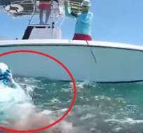 Un buzo es víctima de brutal ataque de tiburón. Foto: captura de video