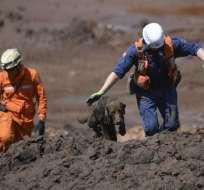 BRUMANDINHO, Brasil.- Rescatistas continúan por séptimo día con el rescate de los cadáveres que dejó dique roto. Foto: AFP.