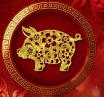 ¿Eres cerdo en el horóscopo chino? Foto: Getty Images