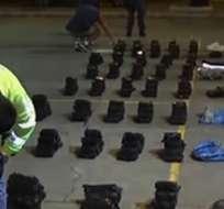 Decomisan casi media tonelada de marihuana en El Oro. Foto: Captura de video