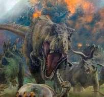 Se cree que  una ola de erupciones comenzó justo antes de la extinción. Foto: Tomado de Caninomag.com.