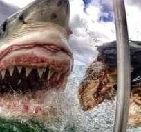 Las impresionantes fotos captadas en la costa sur de Australia se volvieron virales. Foto: Archivo Twitter GoPro