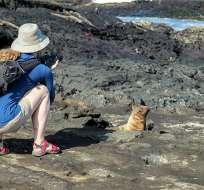 Anulan requisito de carta de invitación para viajar a Galápagos. Foto: Archivo - Referencial