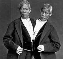 Chang y Eng Bunker, los primeros hermanos llamados siameses.
