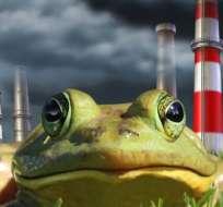 ¿Nos dejaremos llevar por el efecto de la rana hervida?