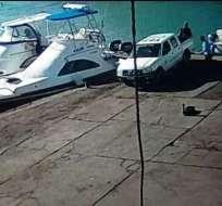 El hecho fue captado por una cámara en el muelle de carga de la isla Santa Cruz. Foto: Parque Galápagos