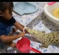 La grabación fue registrada en Indonesia y colgada en YouTube. Foto: Captura de video