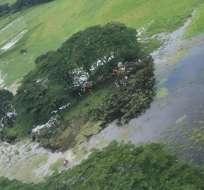 La aeronave se precipitó a tierra.  Foto: DGAC