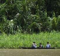Foto: AFP/ Amazonía, Perú