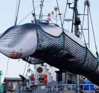JAPÓN.- El barco factoría Nisshin Maru y otros navíos dejarán el puerto de Shimonoseki para ir a cazar cetáceos. Foto: Archivo