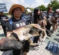 """""""¿Cuántos millones tienen que morir antes de que termine la carne de perro?"""", dicen los carteles. Foto: AP"""