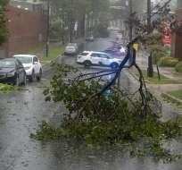 Las ramas de un árbol obstruyen una calle en Halifax, Nueva Escocia, a medida que se acercaba el huracán Dorian. Foto: AP