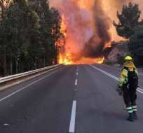 En el 2017 Chile vivió la peor temporada de incendios de su historia.