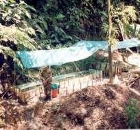 Ejército colombiano detecta y destruye una refinería de las FARC