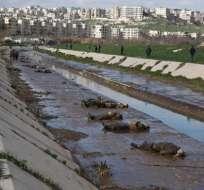 Hallan unos 80 cadáveres en el río de la ciudad siria de Alepo